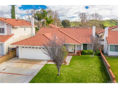Castaic Single Family Home Active Under Contract: 27946 Beacon Street