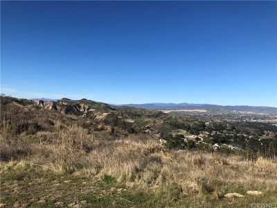Canyon Country Residential Lots & Land For Sale: 16200 Placerita Canyon