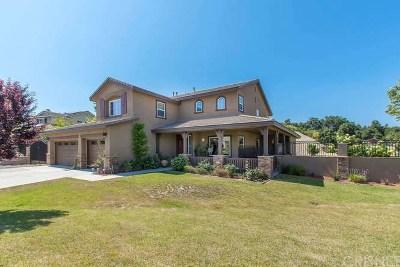 Castaic Single Family Home For Sale: 30149 Valley Glen Street