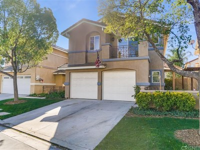 Castaic Single Family Home Active Under Contract: 30333 Marigold Circle