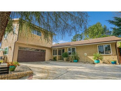 Saugus Single Family Home For Sale: 27343 Catala Avenue