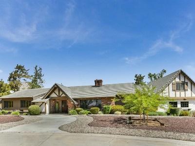 Agua Dulce Single Family Home For Sale: 34303 Agua Dulce Canyon Road