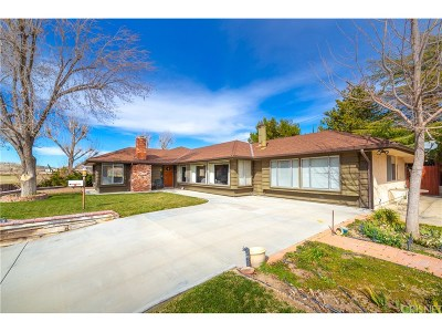 Leona Valley Single Family Home For Sale: 8662 Elizabeth Lake Road