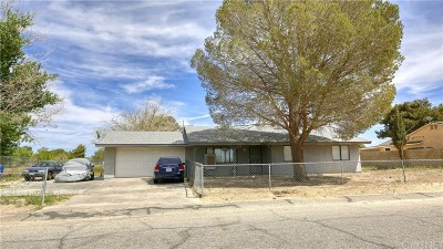 Lancaster Single Family Home For Sale: 40616 174th Street East