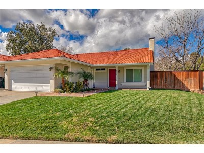 Castaic Single Family Home For Sale: 27703 Stowe Lane