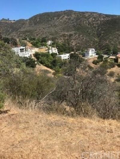Malibu Residential Lots & Land For Sale: 1 Latigo Cyn & Ocean View