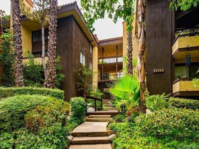 Sherman Oaks Condo/Townhouse For Sale: 13214 Moorpark Street #308
