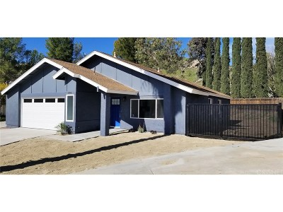 Canyon Country Single Family Home For Sale: 29935 Violet Hills Drive