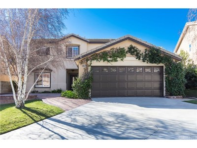 Castaic Single Family Home For Sale: 30637 Beryl Place
