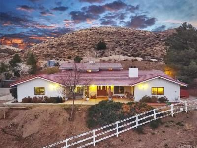 Leona Valley Single Family Home For Sale: 6600 Godde Hill Road