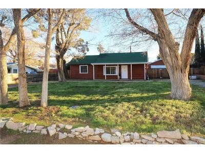 Lancaster Single Family Home For Sale: 4726 West Avenue L13