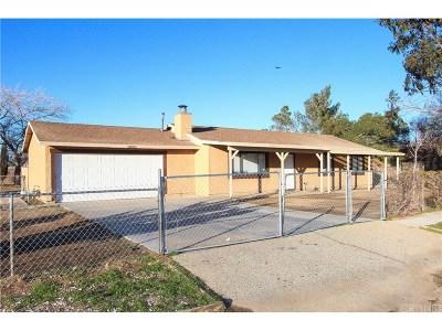 Littlerock Single Family Home For Sale: 10105 East Avenue R10