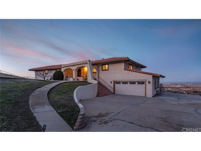 Palmdale Single Family Home For Sale: 1055 Lakeview Drive