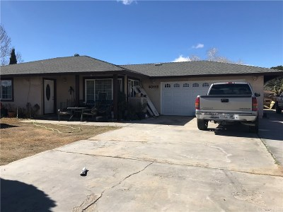 Palmdale Single Family Home For Sale: 40115 169th Street East