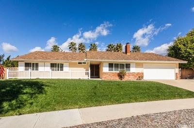 Thousand Oaks Single Family Home For Sale: 91 Marimar Street
