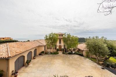 Topanga Single Family Home For Sale: 2656 Vista Del Mar