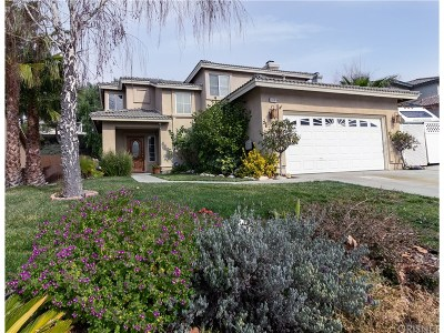 Canyon Country Single Family Home For Sale: 14381 Sequoia Road