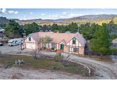 Acton Single Family Home For Sale: 2561 Bent Spur Drive