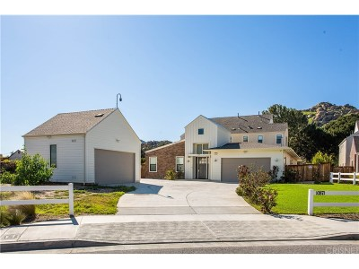 Chatsworth Single Family Home For Sale: 10871 Bee