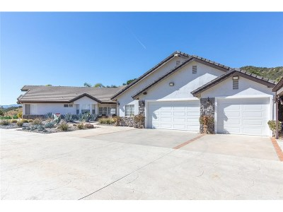 Castaic Single Family Home For Sale: 30771 Sloan Canyon Road