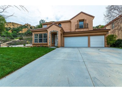Castaic Single Family Home For Sale: 30228 June Rose Court