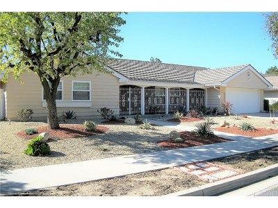 Chatsworth Single Family Home For Sale: 10751 Owensmouth Avenue