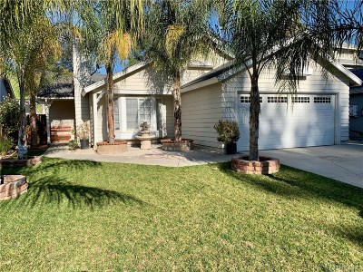 Castaic Single Family Home For Sale: 32328 Green Hill Drive