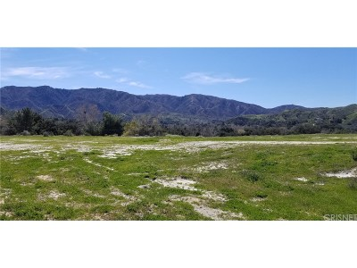 Canyon Country Residential Lots & Land For Sale: 26864 Sand Canyon Road