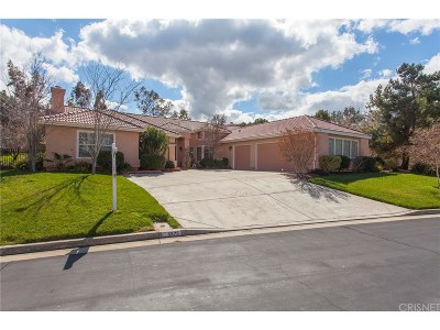 Palmdale Single Family Home For Sale: 5570 Gardendale Lane