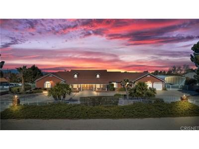 Palmdale Single Family Home For Sale: 2809 West Avenue O-4