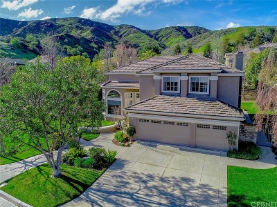 Simi Valley Single Family Home For Sale: 96 Mollison Drive