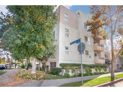 North Hollywood Condo/Townhouse Active Under Contract: 11230 Peach Grove Street #206
