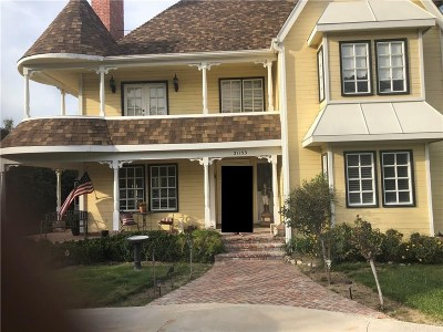 Newhall Single Family Home For Sale: 21153 Placerita Canyon Road