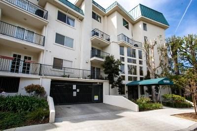 Studio City Condo/Townhouse Active Under Contract: 13030 Valleyheart Drive #308