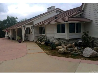 Agua Dulce Single Family Home For Sale: 10434 Calling Road