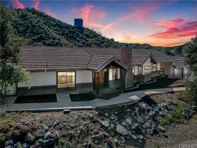 Canyon Country Single Family Home For Sale: 27522 Oak Springs Canyon Road