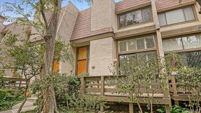 Northridge Condo/Townhouse For Sale: 9000 Vanalden Avenue #151