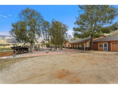 Acton Single Family Home For Sale: 34508 Goldridge Avenue