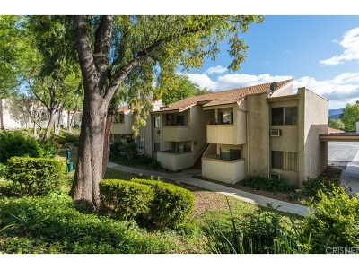 Agoura Hills Condo/Townhouse For Sale: 28947 Thousand Oaks Boulevard #225
