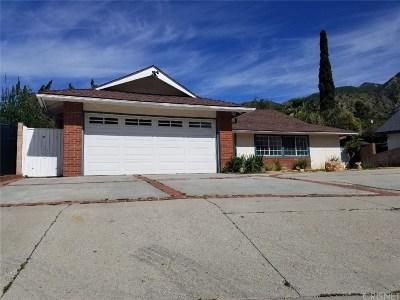Sylmar Single Family Home For Sale: 13897 Garrick Avenue