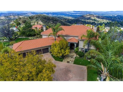 Calabasas Single Family Home For Sale: 24021 Alder Place