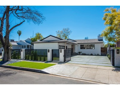 Valley Glen Single Family Home For Sale: 13018 Delano Street