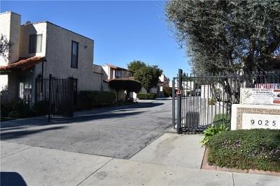 Panorama City Condo/Townhouse For Sale: 9025 Willis Avenue #125