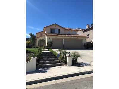 Castaic Single Family Home For Sale: 28450 Monterey Court