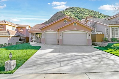 Castaic Single Family Home For Sale: 28660 Oak Valley Road