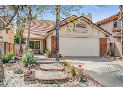Calabasas Single Family Home For Sale: 4040 Cottonwood Grove Trails