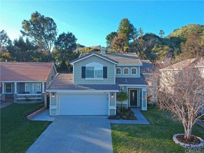 Castaic Single Family Home For Sale: 27853 Villa Canyon Road