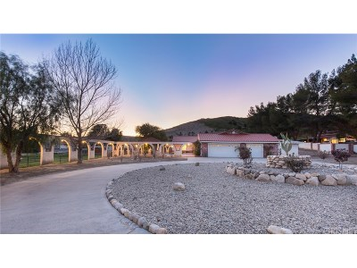 Los Angeles County Single Family Home For Sale: 30675 Lindsay Canyon Road