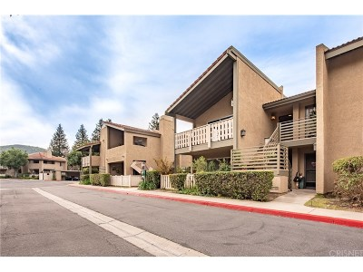 Thousand Oaks Condo/Townhouse For Sale: 460 Arbor Lane Court #201