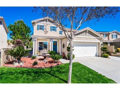 Castaic Single Family Home For Sale: 29880 Cashmere Place